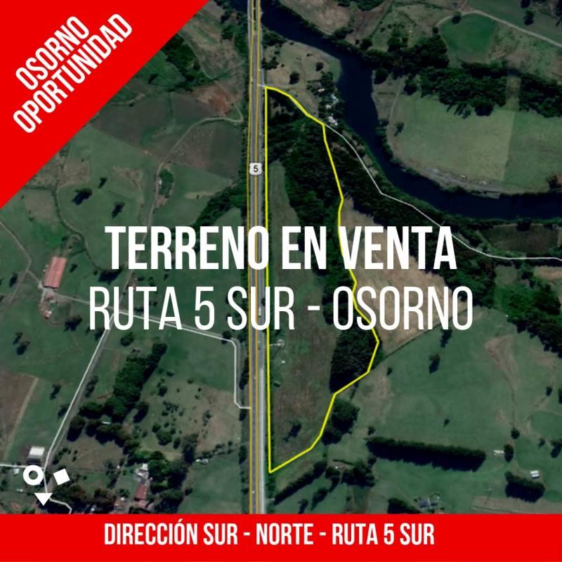 10 HECTÁREAS EN OSORNO FRENTE A LA RUTA 5 SUR, TOTAL 101.500 M2.