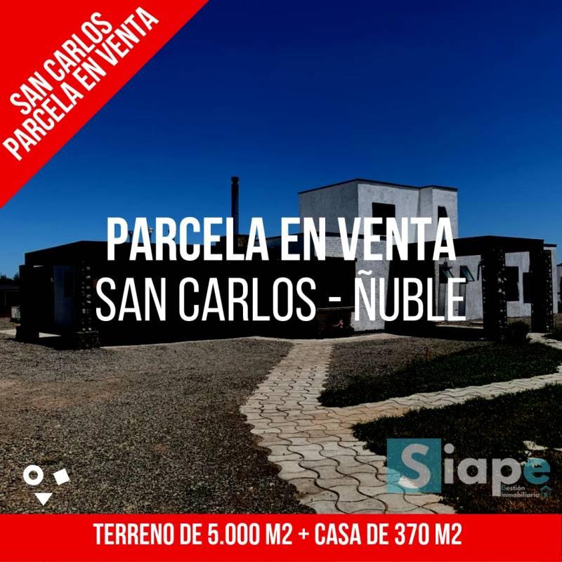 CASA DE 370 M2 EN PARCELA  DE 5.000 M2 - SAN CARLOS