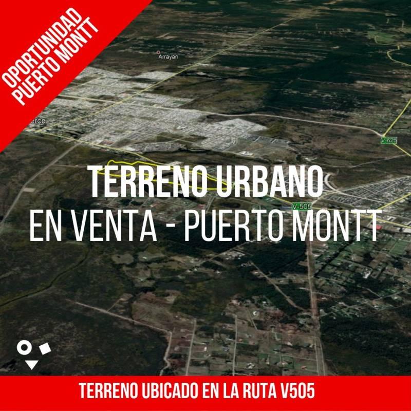 TERRENO DE  210.000 M2, CAMINO PUERTO MONTT A PUERTO VARAS