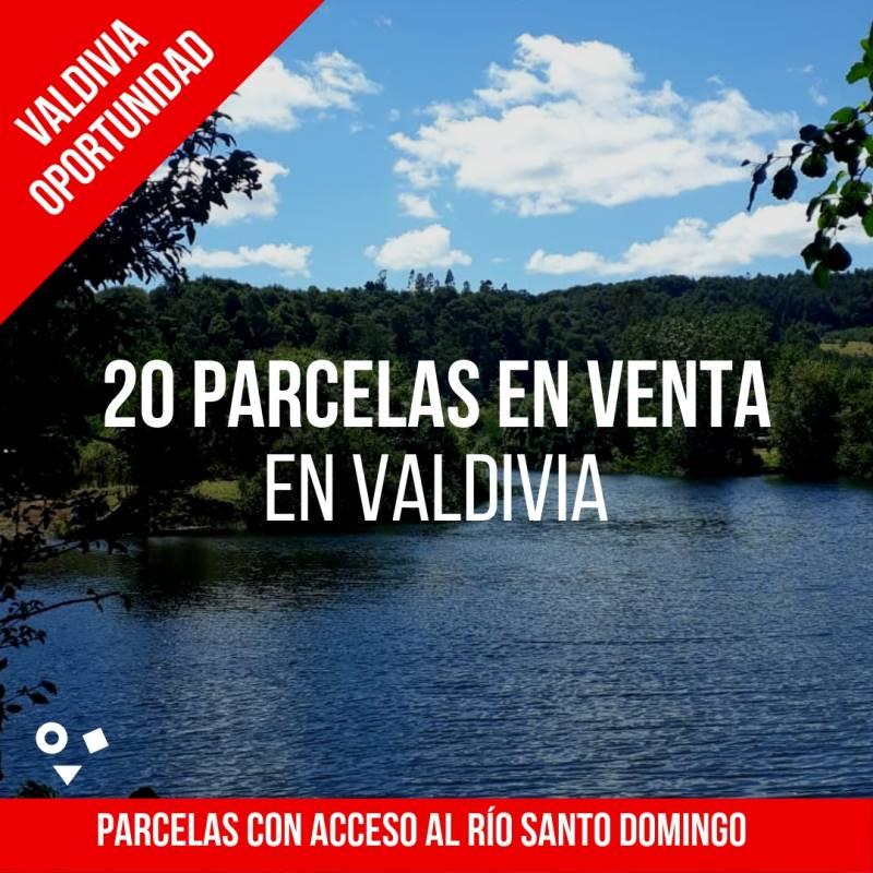 PARCELAS DE 5.000 M2 CON ACCESO AL RIO SANTO DOMINGO - VALDIVIA