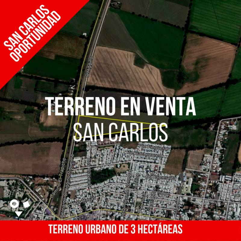 TERRENO DE 3 HECTÁREAS - SAN CARLOS
