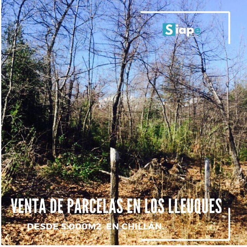 PARCELAS DESDE LOS 5.000 M2 EN LOS LLEUQUES - COMUNA DE PINTO