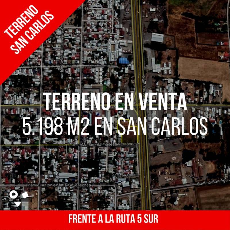 TERRENO DE 5.198 M2 FRENTE A LA RUTA 5 SUR - SAN CARLOS