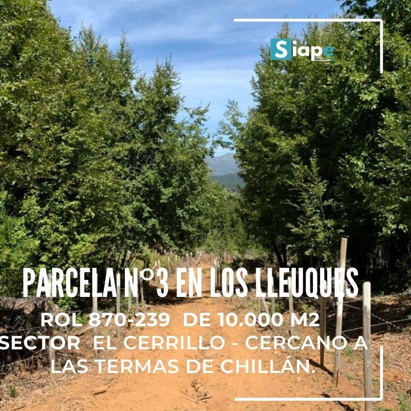 PARCELA 10.000 M2 CON ROL  LOS LLEUQUES – SECTOR EL CERRILLO - CERCANO A LAS TERMAS DE CHILLÁN.